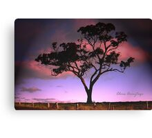 Solitree Canvas Print