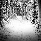 Snow Tunnel by sunnykalsi