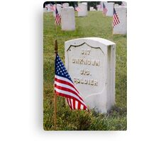 Unknown Hero on Memorial Day Metal Print