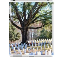 Wilmington National Cemetery iPad Case/Skin