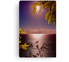 OPENING  SUNRISE LINDA Canvas Print