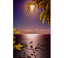 OPENING  SUNRISE LINDA Photographic Print