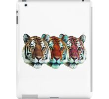 Stages of High In Stripes iPad Case/Skin