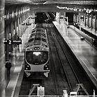 Last Train by Peter Denniston