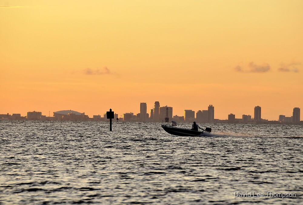 Saint Petersburg Florida by David Lee Thompson