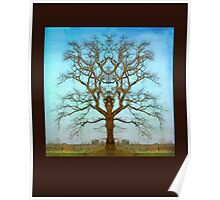Mirror Tree Poster