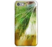 Earth Silk iPhone Case/Skin