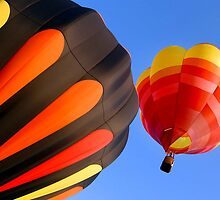 Hot Air Balloon #4 by Oscar Salinas