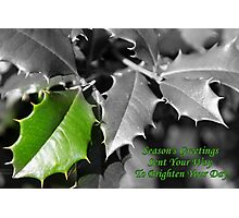 Season's Greetings To Brighten Your Day Photographic Print