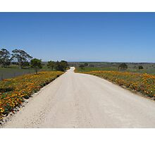 'Country Road, take me Home!' Photographic Print