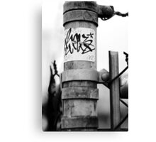 Blink The Stink Canvas Print