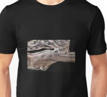 ...dreams of flight... Unisex T-Shirt