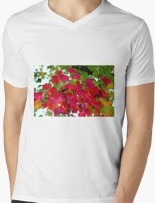 Red Leaves Mens V-Neck T-Shirt