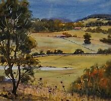 Velvet Afternoon - Kurmond, NSW by Leanne  Jones