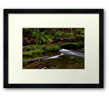 """Rainforest Symphony"" Framed Print"