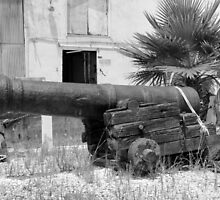 Old Cannon by Cynthia48