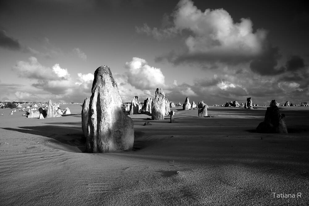 The Pinnacles Desert, Western Australia by Tatiana R
