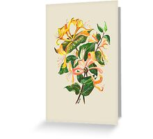 Honeysuckle Bouquet Greeting Card