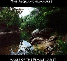 Asquamchumaukee by Wayne King
