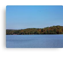 Flying South Canvas Print