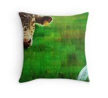 you gotta love a cow and his egret : Charolais Cattle  Throw Pillow