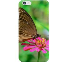 Butterfly 01 iPhone Case/Skin