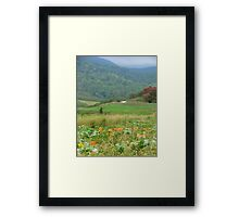 Country Pumpkins Framed Print