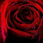 Scarlet by Keith G. Hawley