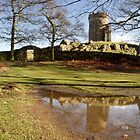 Bradgate Park by Paul Blackwell
