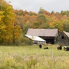 Old farm landscape by Sean McConnery