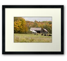 Old farm landscape Framed Print