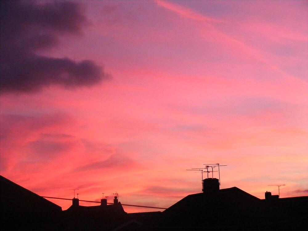 Red sky at night, neighbour take flight by darthsy