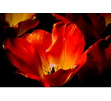 Red Center Photographic Print