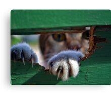 Daily Visitor. Canvas Print