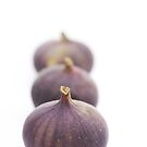 Fig Queue by Sarah-Jane Covey