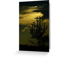 Sunset in the Swamp Greeting Card