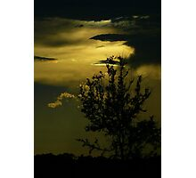Sunset in the Swamp Photographic Print