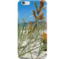 Spinifex on the dunes iPhone Case/Skin