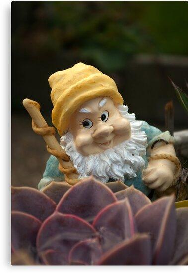 Sunnyboy the Garden Gnome by steppeland