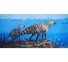 Cretaceous Overlook - Brachylophosaurus Photographic Print