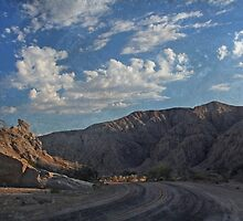 Box Canyon Road by Laurie Search