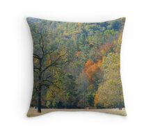 Meadow, Catalooche, GSMNP Throw Pillow