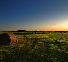 hay fields - ii by Heath Dreger