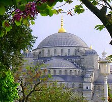 Springtime in Istanbul by Patsy Smiles