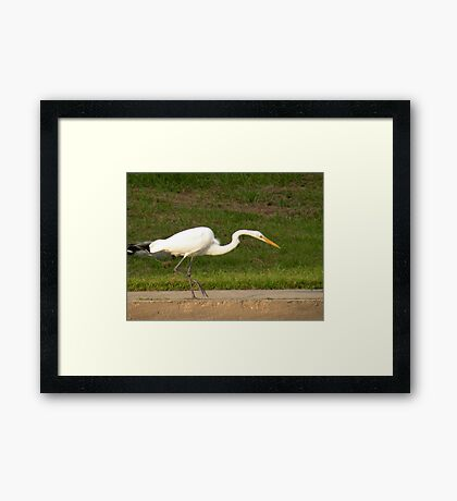 how am I supposed to sneak up on a fish with this duck up my ass? Framed Print