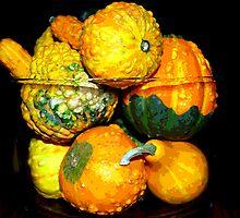 Gourds by jpryce