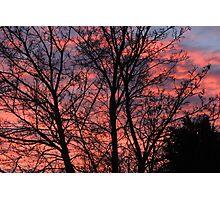 Winter dawn Photographic Print