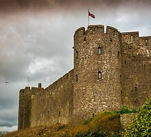 Pembroke Castle by mlphoto