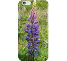 Luscious Lilac Lupin iPhone Case/Skin