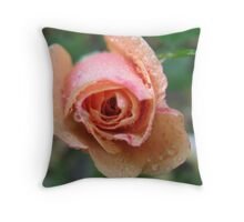 Frothy Apricot Rose Throw Pillow